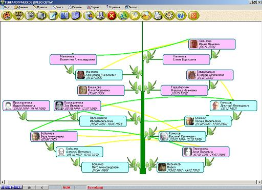 Family Tree Software  Draw your family tree diagram  GenoPro